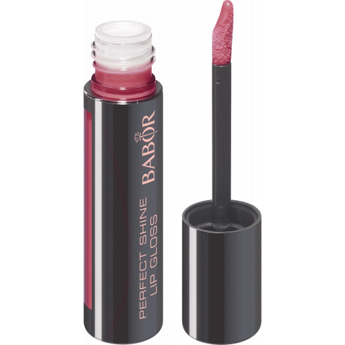 Perfect Lip Gloss 06 nude rose